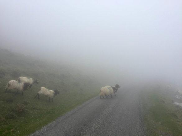 Mystische Stimmung im Baskenland - Pyrenäen Durchquerung Rennrad